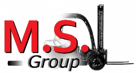 logo ms group